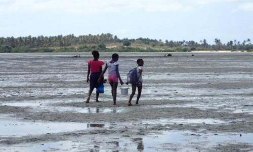 Zdjecie MOZAMBIK / Poł. - wschodni Mozambik  / Zatoka w mieście Inhambane  / Czegoś na pewno szukały