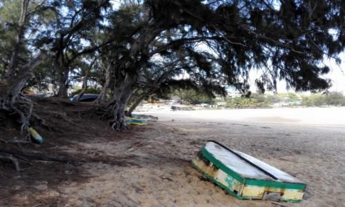 Zdjęcie MOZAMBIK / Poł. - wschodni Mozambik  / Zatoka Tofo/ plaża / Łódka na urlopie