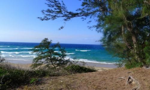 MOZAMBIK / Poł. - wschodni Mozambik  / Zatoka Tofo/ Na wydmach / Błękit oceanu