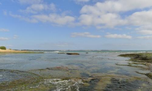 Zdjecie MOZAMBIK / Poł. - wschodni Mozambik  / Zatoka Tofo / Przybrzeżna rafa