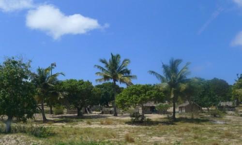 Zdjecie MOZAMBIK / Poł. - wschodni Mozambik  / Gdzieś w drodze  / Wioska w Mozambiku