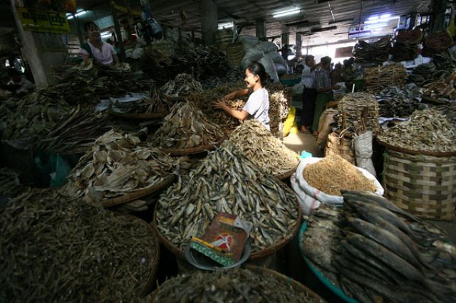Zdjęcia: Mandalej, Płd kraju, Targ rybny, MYANMAR