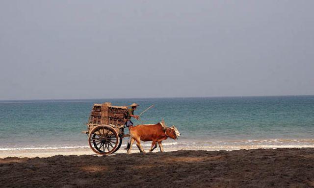 Zdjęcia: NGAPALI BEACH, Płd.Birmy, * * *, MYANMAR