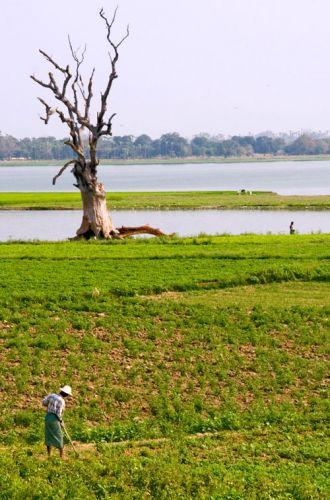 Zdjęcia: Okolice Rzeki IRWADY, Mandalay, * * *, MYANMAR