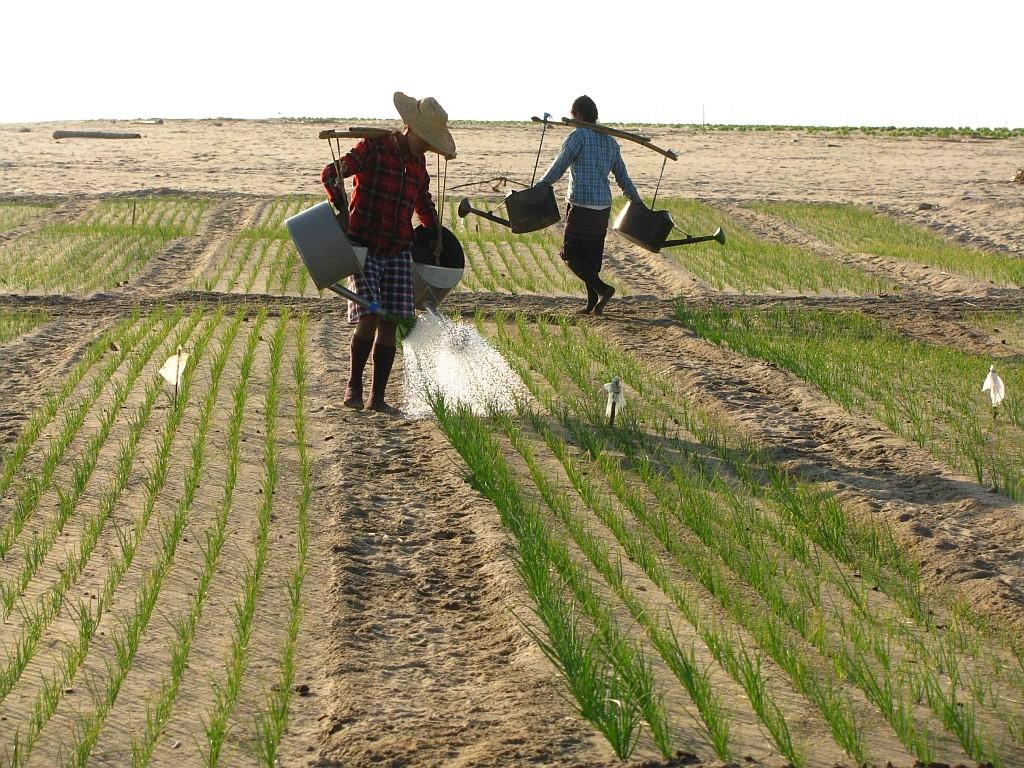 Zdjęcia: Nyaung OO, środkowa Birma, wioska Monów nad Irawadi, MYANMAR