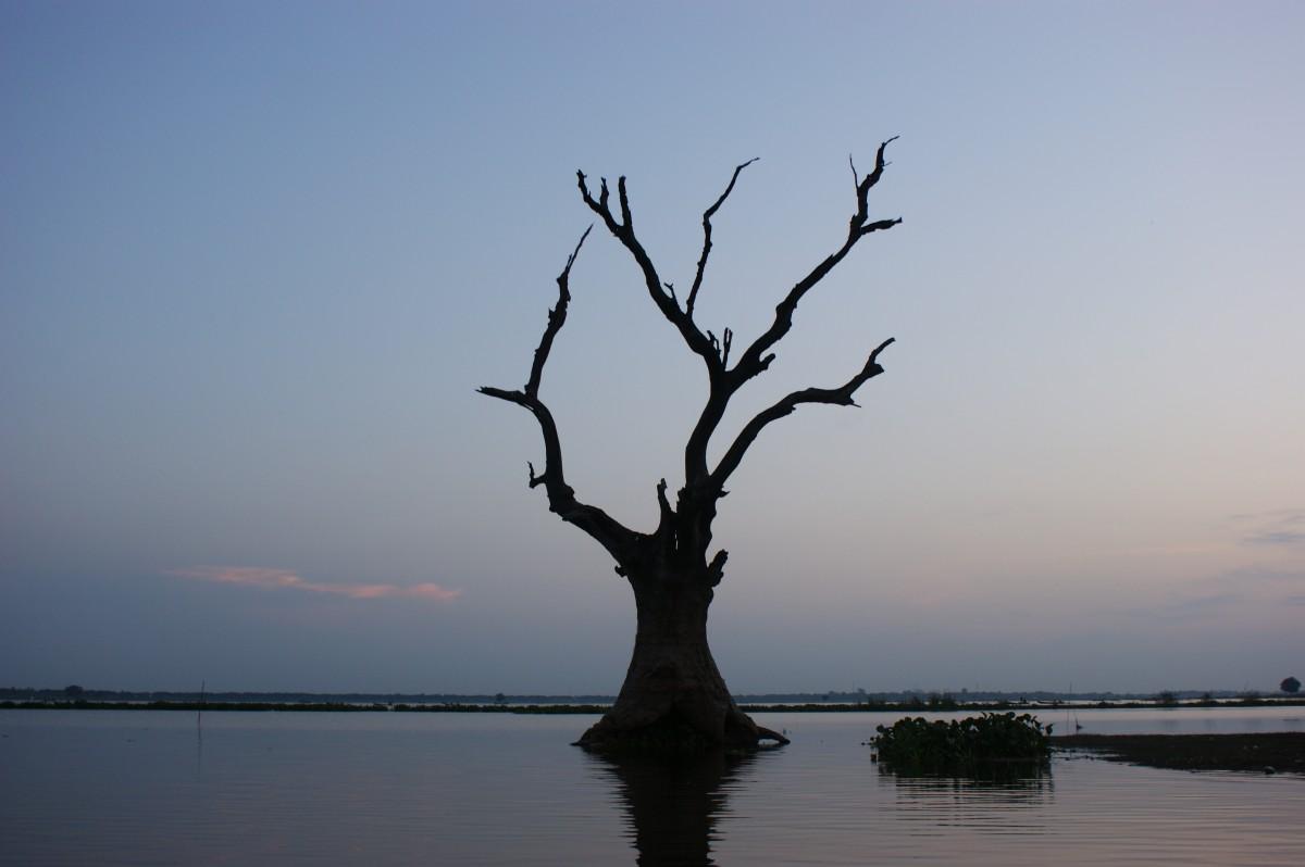 Zdjęcia: Amarapura, -Mandalay, Pod mostem Tekowym , MYANMAR