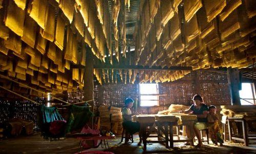 MYANMAR / - / Kyaukme, Birma (Myanmar) / Rodzinny interes