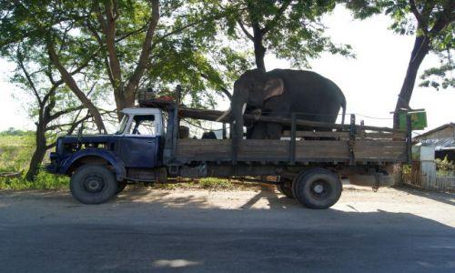 Zdjęcie MYANMAR / BIRMA / NA SZLAKU / NIE TYTLKO MY ZWIEDZAMY BIRMĘ
