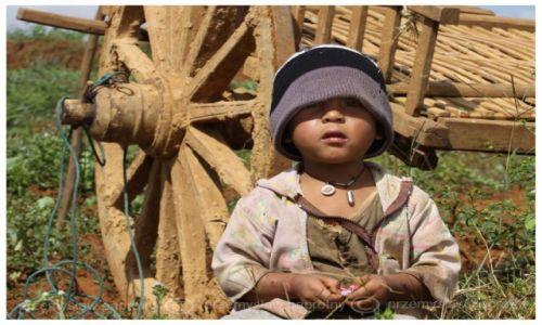 Zdjecie MYANMAR / Taungyy / pole / Dzieciaczek