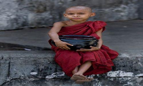 Zdjecie MYANMAR / Rangoon / Shwedogon / mniszek
