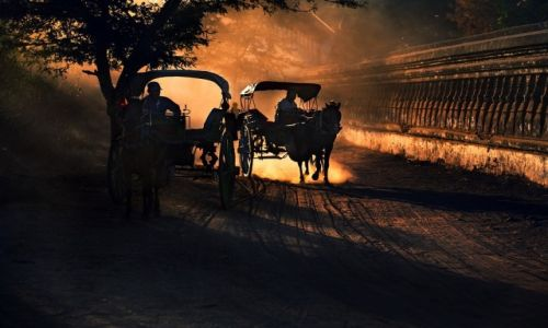 MYANMAR / Mandalay / Bagan / Dorozki w Bagan