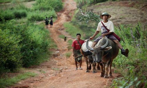 Zdjecie MYANMAR / - / Okolice Kalaw / Ciężko z motoryzacją na prowincji