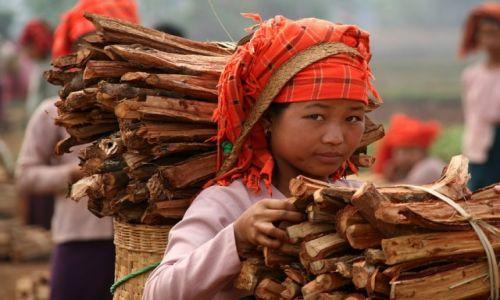 Zdjęcie MYANMAR / Shan / Inle lake / Dziewczyna z nad jeziora Inle