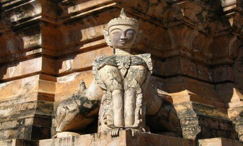 Zdjecie MYANMAR / stan Shan / okolice jeziora Inle / pagody w Kakku