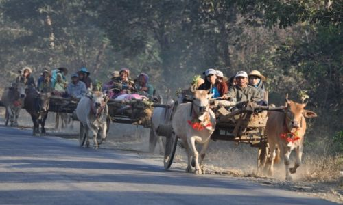 Zdjęcie MYANMAR / ? / W drodze na południe / Pocztowka z Birmy II