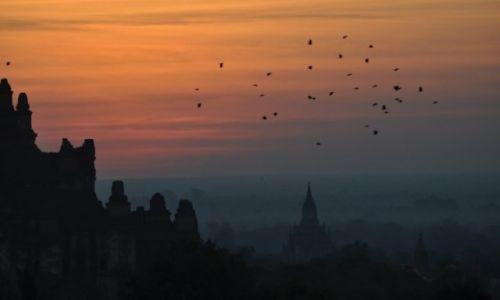 Zdjęcie MYANMAR / Bagan / Bagan / Bagan o brzasku