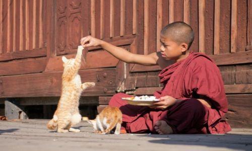 Zdjecie MYANMAR / Szan / okolice jez Inle / Podziel się