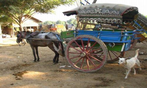 Zdjęcie MYANMAR / okolice Mandalay / Inwa / parking w Inwie