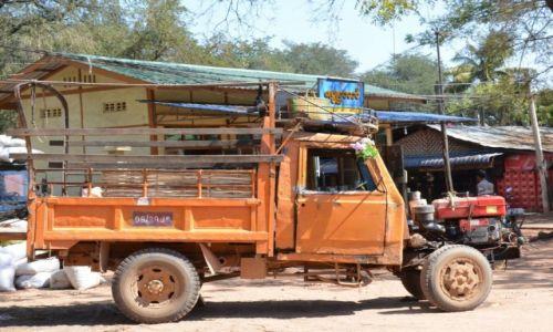 Zdjęcie MYANMAR / gdzieś po drodze / po drodze / ...ale kwiatek w