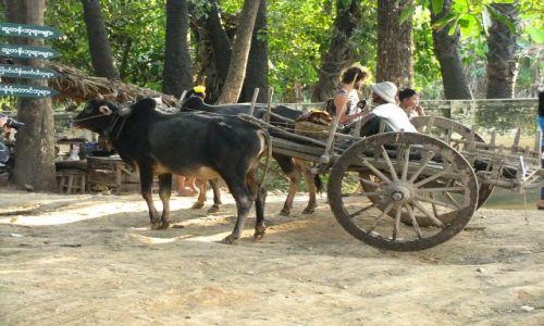 Zdjęcie MYANMAR / okolice Mandalay / Inwa / obrazki z Inwy