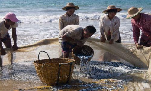 Zdjęcie MYANMAR / Ngwe Saung Beach / Ngwe Saung Beach / Wyjmowanie z sieci