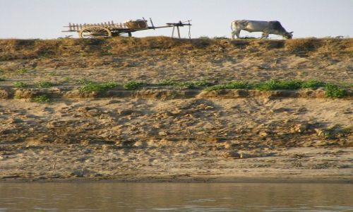 Zdjecie MYANMAR / okolice Baganu / Nyaung OO / nad Irawadi