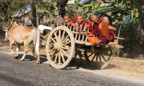 Zdjecie MYANMAR / stan Shan / po drodze / Jedzie wóz