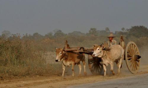 Zdjęcie MYANMAR / Birma / Birma / Na autostradzie