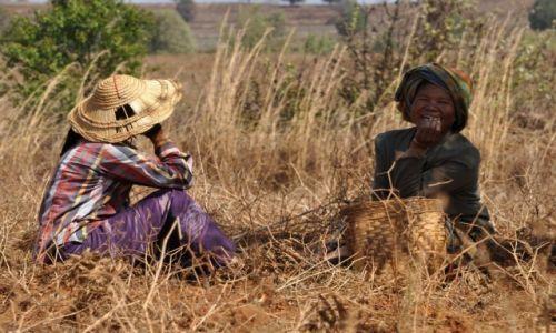 Zdjęcie MYANMAR / Shan / Shan  / Odpoczynek