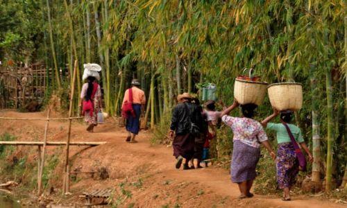 Zdjecie MYANMAR / INLE  / INLE  / Nad Inle