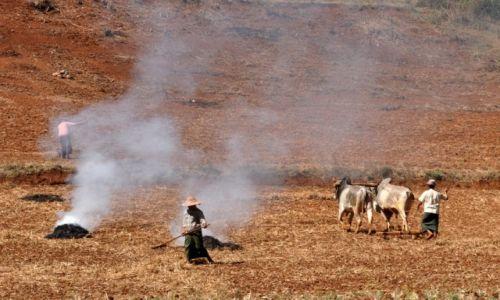 Zdjęcie MYANMAR / Shan / Shan  / Na wsi cd