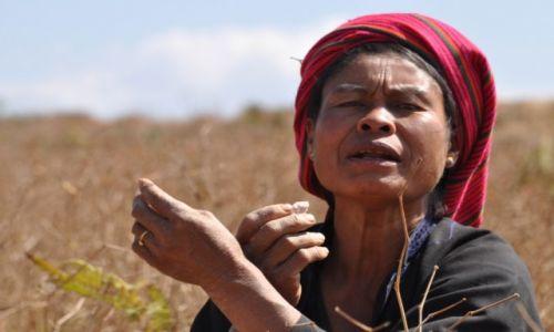 Zdjęcie MYANMAR / Shan / wieś / Kobieta z plemienia Smoków