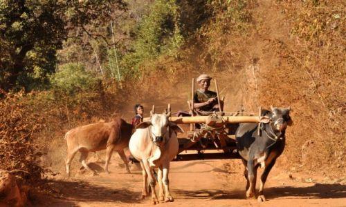 Zdjęcie MYANMAR / Shan / Shan  / Powrót do domu