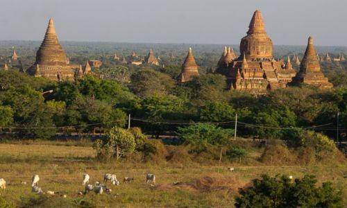 MYANMAR / Bagan / Bagan / Bagan o zachodzie