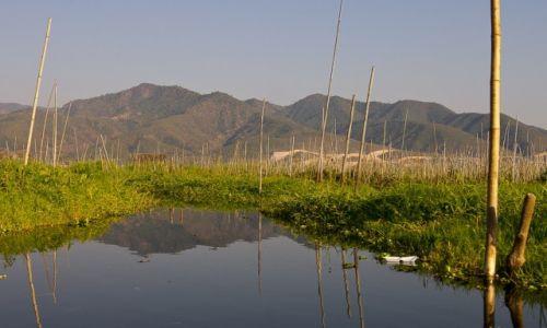 MYANMAR / Inle Lake / Inle Lake / Pływające ogrody