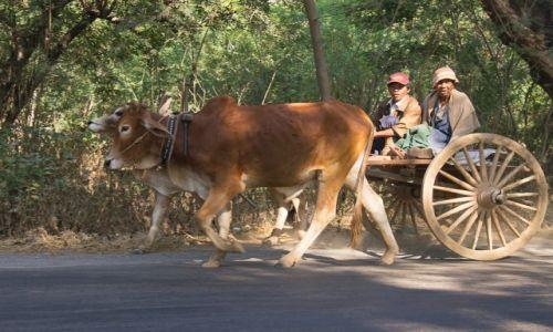 Zdjecie MYANMAR / okolice Bagan / okolice Bagan / Pojazd szybkobieżny