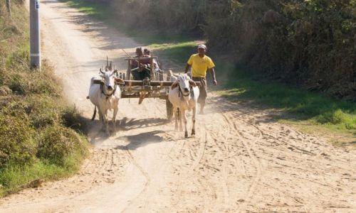 Zdjęcie MYANMAR / na wsi / po drodze / Przewóz osób