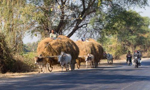 Zdjęcie MYANMAR / na wsi / po drodze / Droga