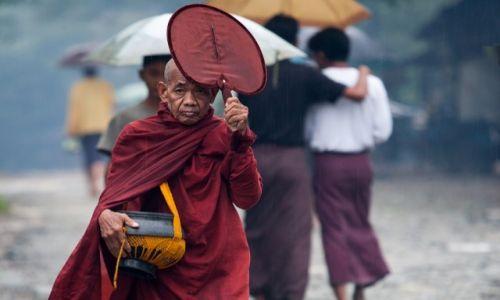 Zdjęcie MYANMAR / Rakhine / Ngapali / Parasol mnicha