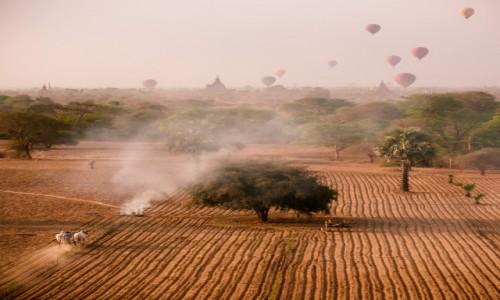 Zdjęcie MYANMAR / Bagan / Pagan / zderzenie światów