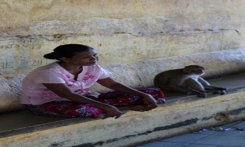 Zdjecie MYANMAR / - / góra Popa / góra Popa