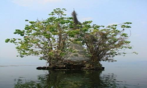 Zdjecie MYANMAR / jezioro Inle / Inle / zatopione świątynie