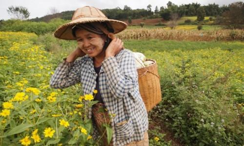 MYANMAR / - / Birma / Birma