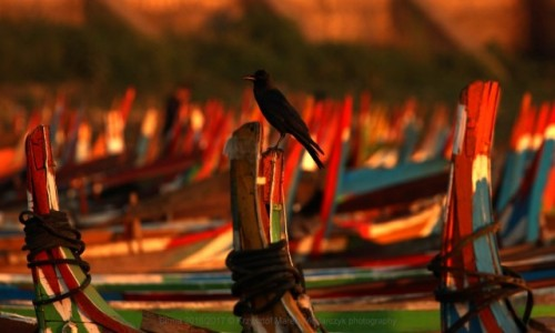 Zdjecie MYANMAR / Mandalaj / Amarapura / Myanmar (Birma) łodzie z Amarapura