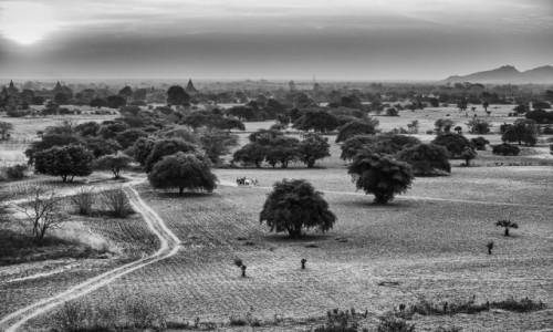 Zdjecie MYANMAR / Bagan / Pagan / zatrzymane w czasie