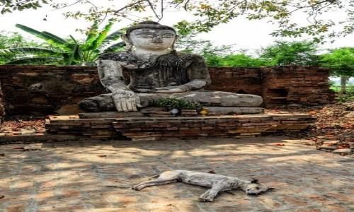 Zdjecie MYANMAR / Mandalay / Amarapura / Budda chillout