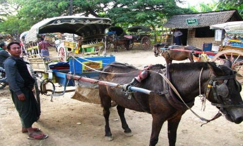 Zdjecie MYANMAR / okolice Mandalay / Inwa (Ava) / obrazek z Inwy