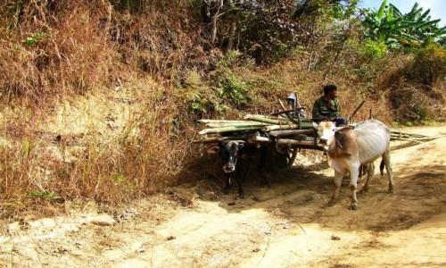 Zdjęcie MYANMAR / jezioro Inle / trekking po górskich wioskach ludu Pa-O / spotkanie na szlaku