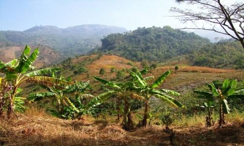 Zdjęcie MYANMAR / stan Shan / trekking po górskich wioskach ludu Pa-O / widok na wzgórza otaczjące Inle