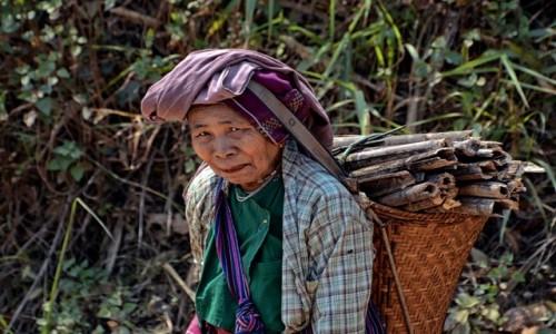 Zdjecie MYANMAR / Stan Arakan, dystrykt Sittwe / w drodze do Mrauk U / Babcia z plemienia Chin - bez tatuażu